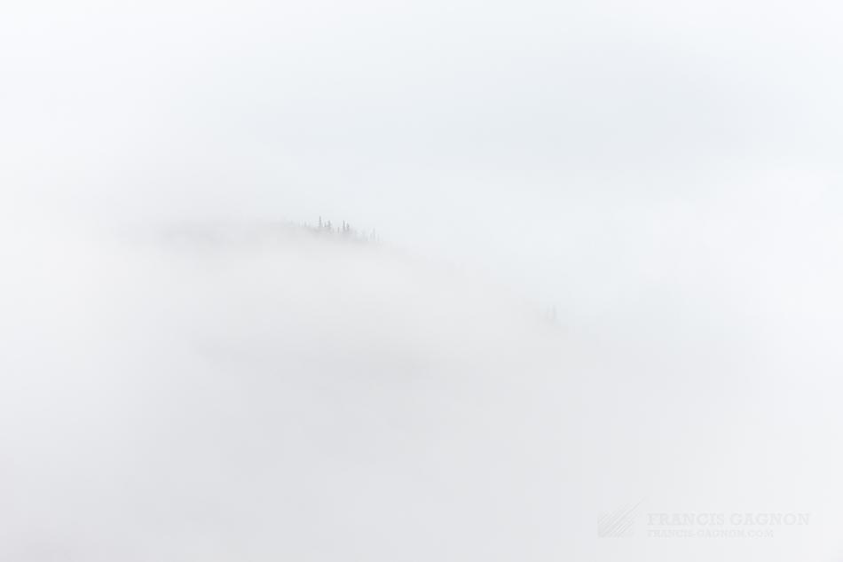 Une épaisse brume cachant les montagnes de la Réserve faunique de Matane.