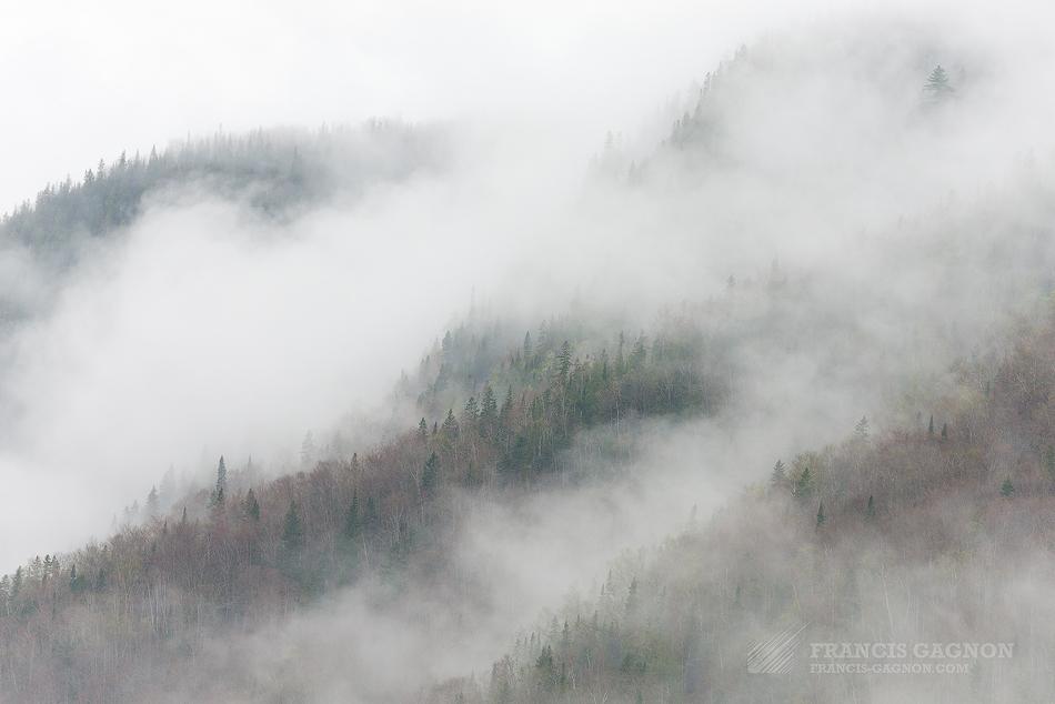 Une brume rampante engloutissant les montagnes de la Réserve faunique de Matane.