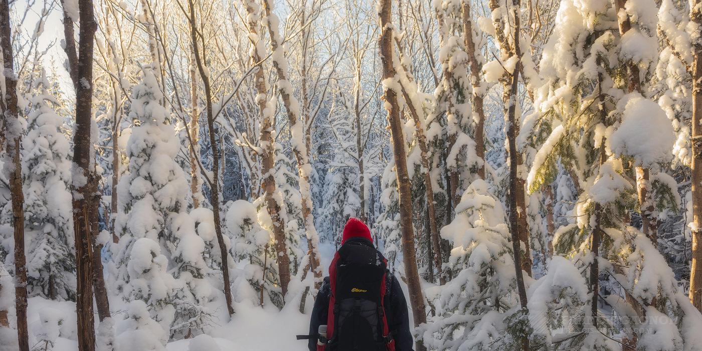 Quelques conseils pour apprivoiser la photographie de paysage en hiver