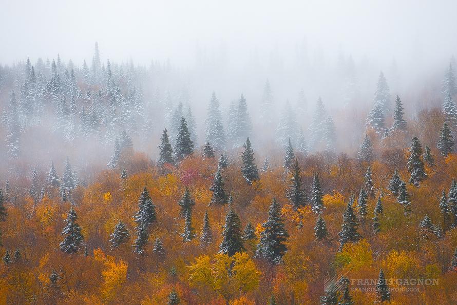 Petite-rivière-saint-françois, charlevoix, automne, québec, canada, foliage, snow