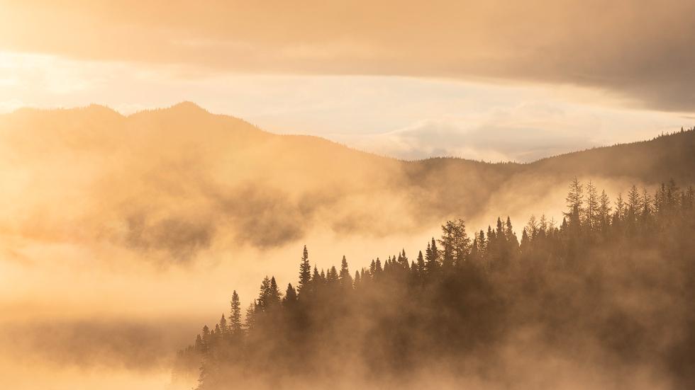 Mini-série : Les défis de la brume